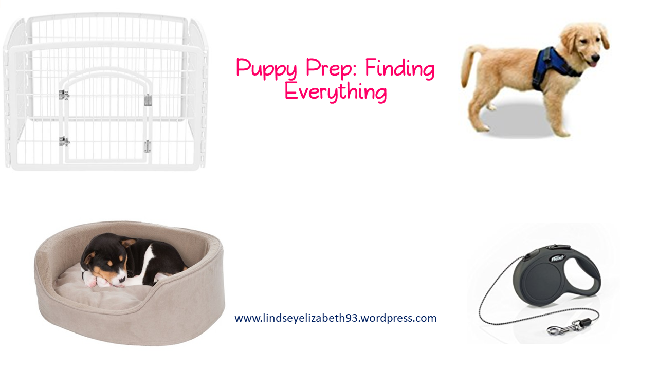 puppy prep finding everything.png